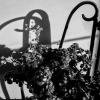 shadow-6