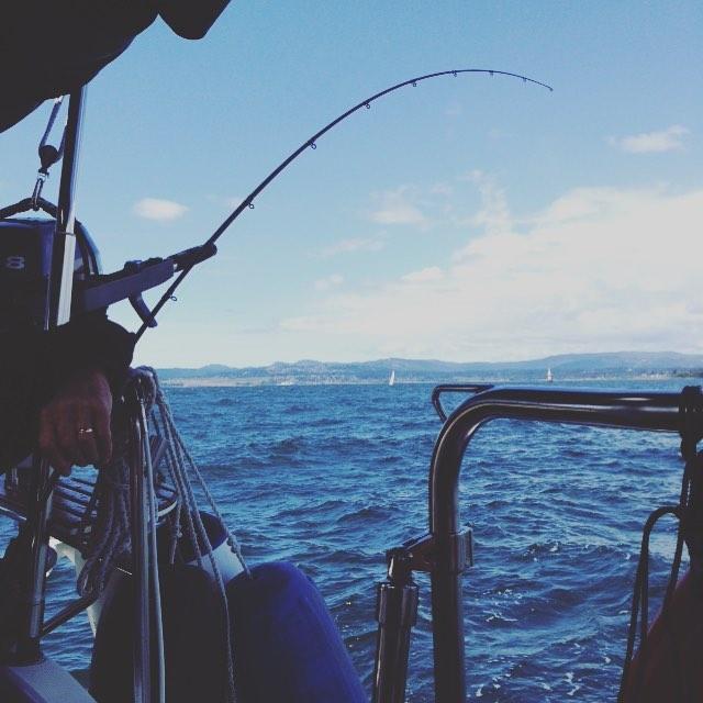 Gone fishin'. No bites though...