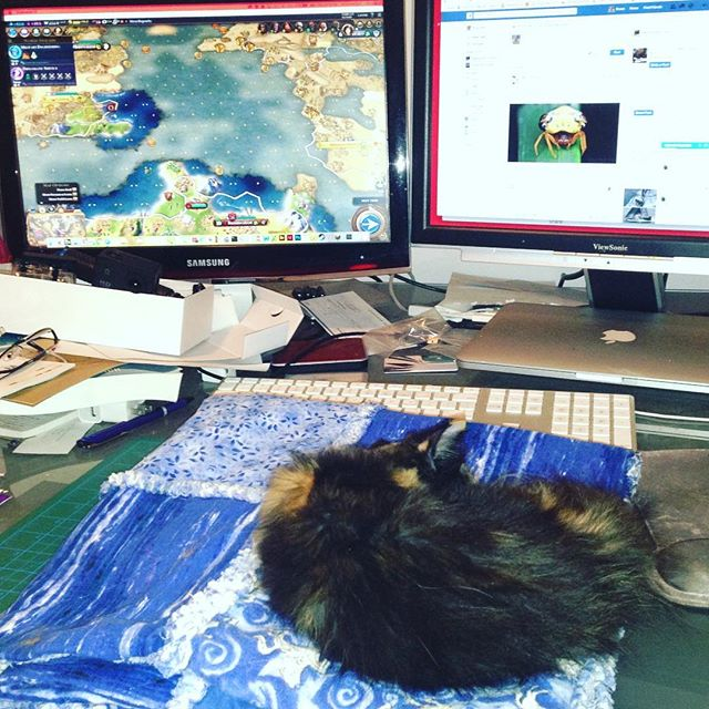 Day 6: Mastering Civilization VI? Check! #kittychecklist