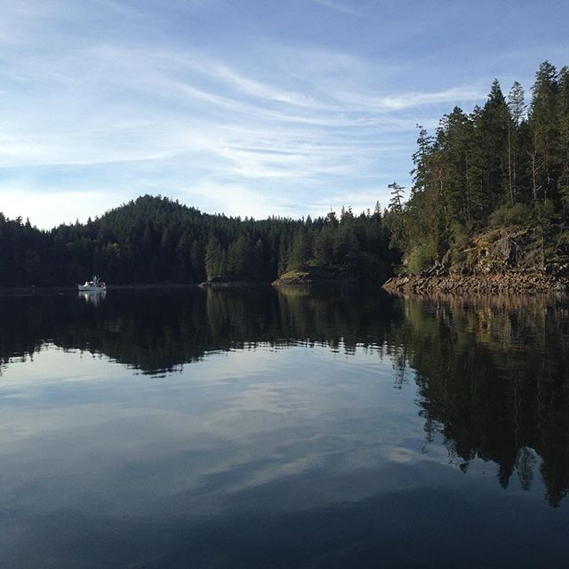 Last time I was in Squirrel Cove there were 100+ boats here. Right now there are 2. #springcruising  #DesolationSound