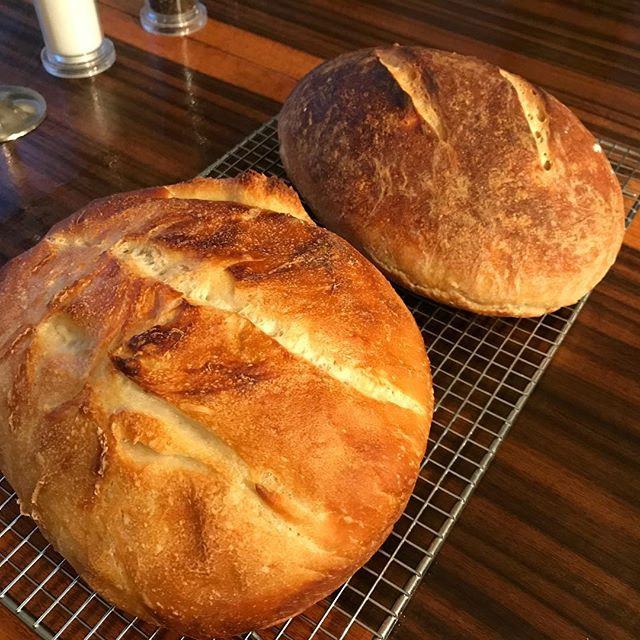 Sourdough done two ways. Let's see if either turned out!