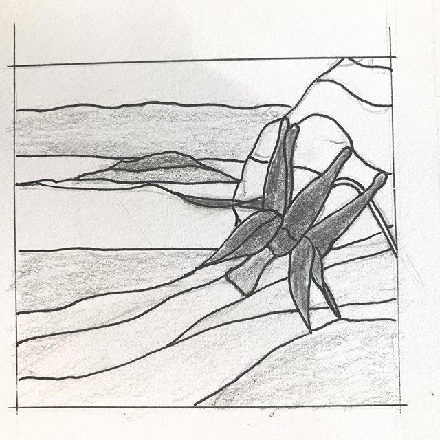 Day 2 of #drawingaugust — a stunningly-red Aquilegia encountered on Mound Island #columbine #imaginethecolours #broughtons #stainedglasspattern #aquilegiaformosa ##beautifulbc