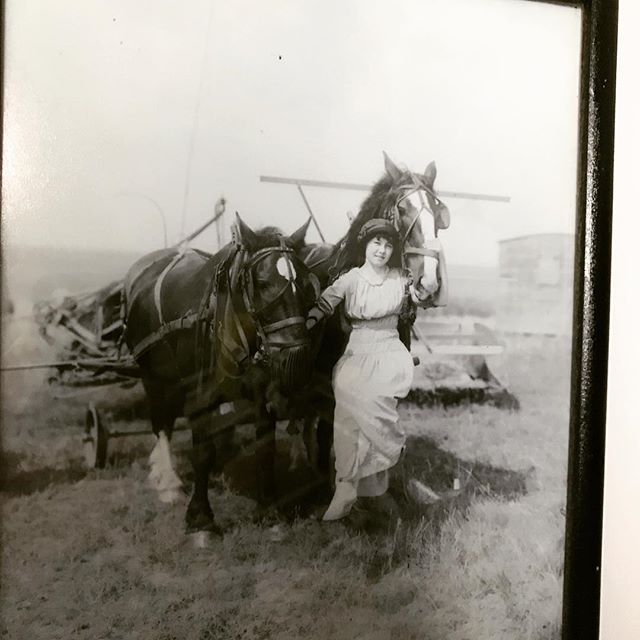 "#day20 This is a print of a early-20th-century photograph from the Alberta Provincial Archives that caught L's eyes. It hangs on the wall as another example ""iffy"" art :-) ... but art is in the enjoyment right ... and how could you not adore this young woman? The Farmer's Daughter, Strathmore c.1908 Silver gelatin print — H. Pollard #31daysofart #art #artists #artwork #beautiful #alberta #photography #photo #b&wprint #farmersdaughter"
