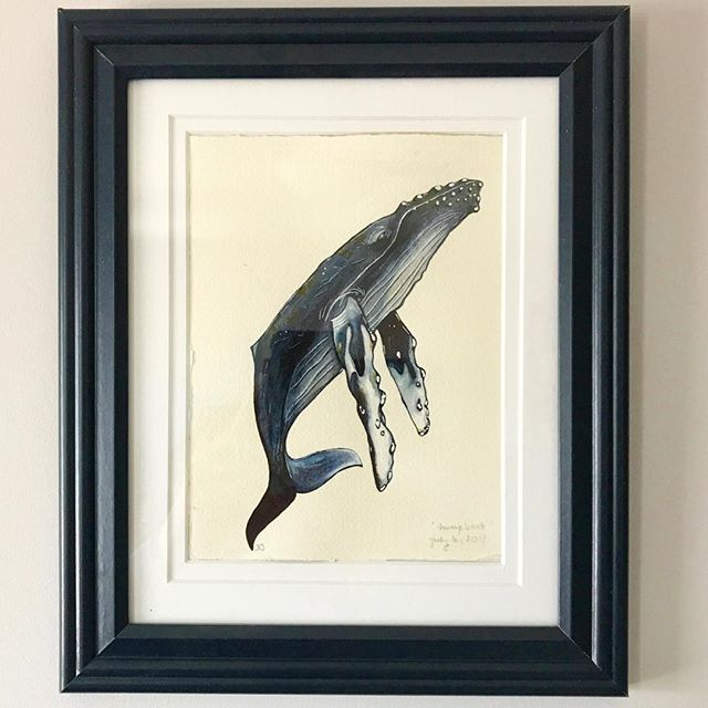 #day17 I recently acquired this painting from another long-time acquaintance who I first met at Hole's decades ago—seems we were an artistic bunch. Nikki draws nature and we are drawn together by a love of west coast fauna and fungus. I was over the moon when I finally managed to snag one of her illustrations. Humpback whale acrylic — Nikki Stoyko @theflora_faunaproject #31daysofart #art #artists #artwork #beautiful #stalbert #yegartists #watercolor #painting #endangeredspecies #westcoastart