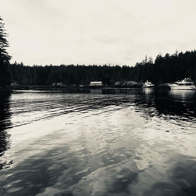 A little dull and grey this am, but it makes for some great b&w shots ? #sunshinecoast #smugglercove #cruisingPNW #beautifulBC