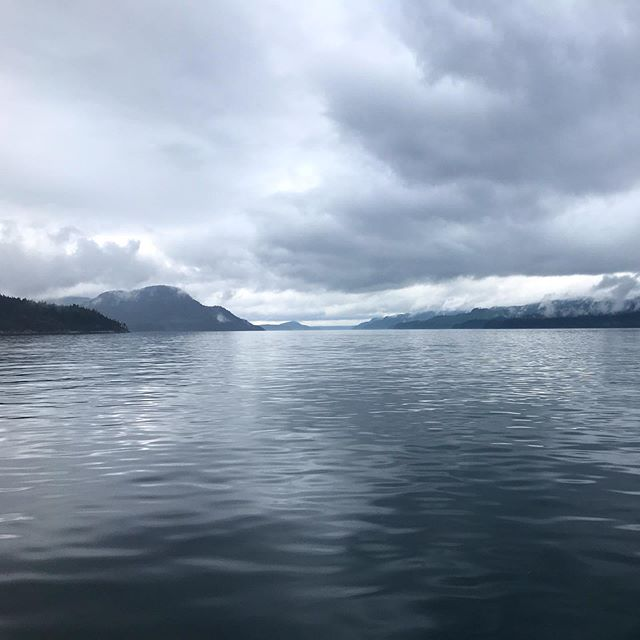 Even gray days are beautiful when you are on the water. Discovery Passage!
