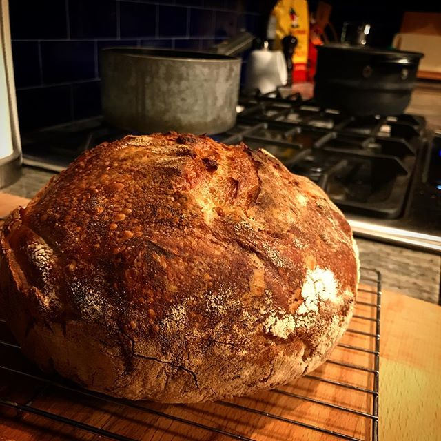 Sourdough tonight. By Jove, I think I've got it (finally)!