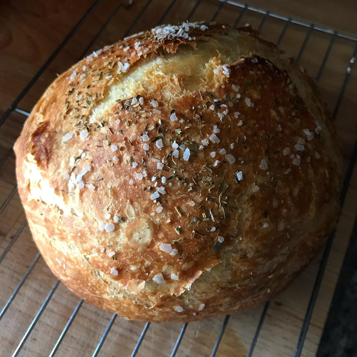 What with keeping up with the sourdough, I forget about my trusty standby no-knead. Mmmm, with herbes de Provence and salt!