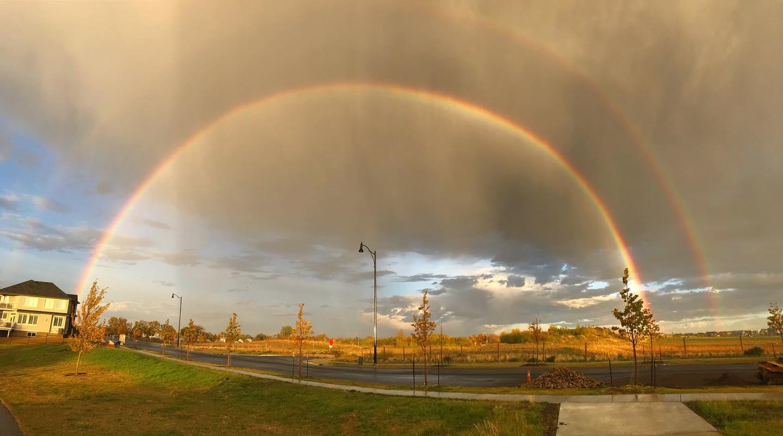 Went for a walk last night. Got wet. #rainbow